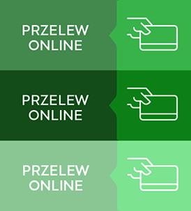 Przelew online
